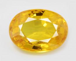 Sapphire 1.34 Cts Amazing Rare Natural Fancy Yellow Gemstone