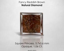 RAREST RARE ! Square Princess 1.06 Ct. Loose Natural Diamond Reddish Brown