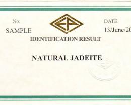 Certificate service to neuroglobe