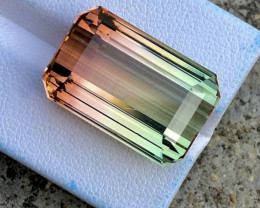 31.30 CTS Natural Bicolor Tourmaline Gem