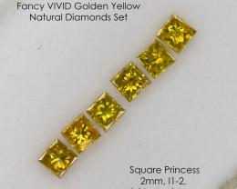 2mm 0.31 Ct of 6 pcs Set Fancy VIVID Golden Yellow Princess Loose Natural D