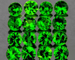2.50 mm Round 16 pcs 1.15cts Chrome Green Diopside [VVS]