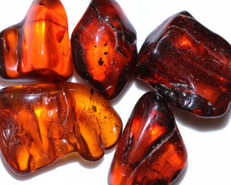 248 Cts 5 pcs Natural  Polished Amber from Poland  code CCC2737