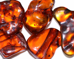 340 Cts 5 pcs Natural  Polished Amber from Poland  code CCC2739