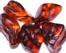 238 Cts 5 pcs Natural  Polished Amber from Poland  code CCC2743