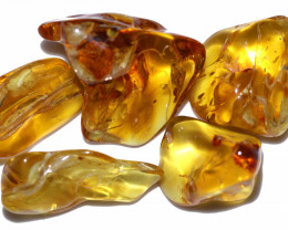 251.25 Cts 5 pcs Natural  Polished Amber from Poland  code CCC2757