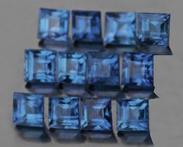 2.20 mm Square 12 pcs 1.10ct Blue Sapphire [VVS]