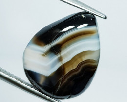 10.85 ct Natural Black Lace Agate  Pear Cabochon  Gemstone