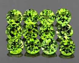 4.00 mm Round 12 pcs 3.37cts Green Peridot [VVS}