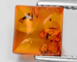 Baltic Amber 0.78 Cts Natural Golden Orange Color