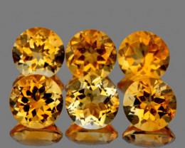 5.00 mm Round 6 pcs 2.65cts Golden Yellow Citrine [VVS]