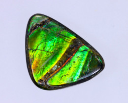 16x12mm,  7.67cts Natural Canadian Ammolite Stone / MA1493