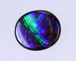 17x14mm,  10.30cts Natural Canadian Ammolite Stone / MA1532