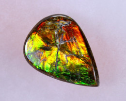 15x11mm,  5.92cts Natural Canadian Ammolite Stone / MA1542
