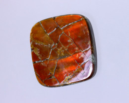 23x23mm,  26.15cts Natural Canadian Ammolite Stone / MA1561