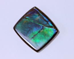 15x14mm,  13.53cts Natural Canadian Ammolite Stone / MA1571