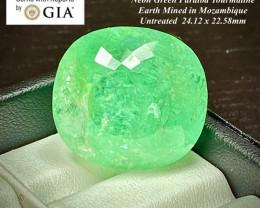 75.71ct GIA Paraiba Tourmaline - Neon Green  - UNHEATED - 24.12 x 22.58mm