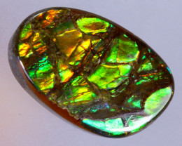 16x11mm,  7.93cts Natural Canadian Ammolite Stone / MA1588