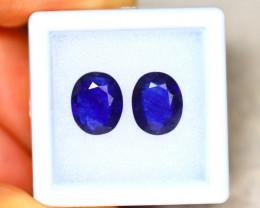 Ceylon Sapphire 4.90Ct 2Pcs Royal Blue Sapphire EN74/A23