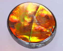 15x13mm,  7.19cts Natural Canadian Ammolite Stone / MA1605
