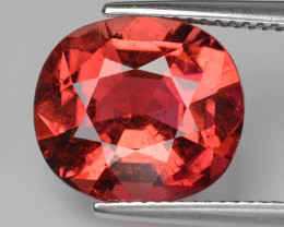 5.86 Ct Tourmaline Master Cut With Top Luster PT4