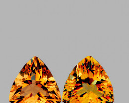 7.00 mm Trillion 2 pcs 2.32cts Golden Orange Citrine [VVS]
