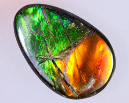 14x9mm,  4.93cts Natural Canadian Ammolite Stone / MA1641