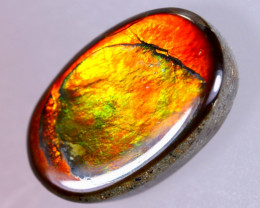 14x9mm,  5.98cts Natural Canadian Ammolite Stone / MA1691