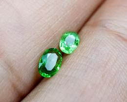 0.61Crt Rare Tsavorite  Natural Gemstones JI20