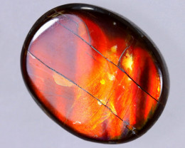 13x10mm,  5.67cts Natural Canadian Ammolite Stone / MA1741
