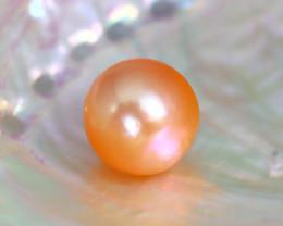 11.0mm 11.12Ct Natural Australian South Sea Orange Color Pearl B2126