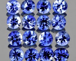 2.40 mm Round 16 pcs 1.00ct Ceylon Blue Sapphire [VVS]