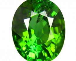 Tourmaline 1.54 Cts  Green Portuguese cut BGC2002 | From Congo
