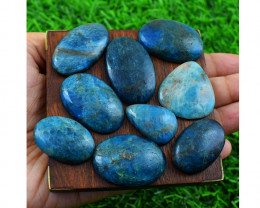 WOW Genuine Apatite  Flat Back Cabochons Lot