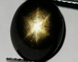 6.55 CTS NATURAL BLACK SIX LINE STAR SAPPHIRE UNHEATED GENUINE CABS
