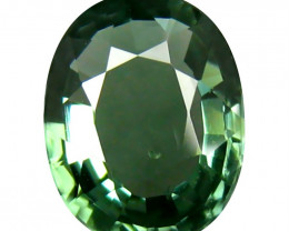 Tourmaline 1.7 Cts  Green Portuguese cut BGC1986 | From Congo
