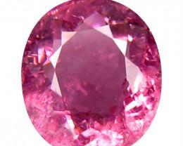 Tourmaline 1.5 Cts  Pink Portuguese cut BGC1998 | From Congo