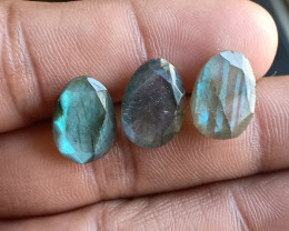 NATURAL LABRADORITE 3 Pcs Rose Cut Gemstones VA5984