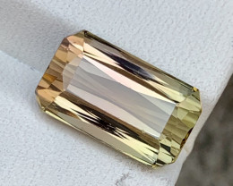 8.20 carat Natural bi color Tourmaline gemstone.