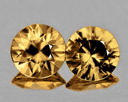 4.80 mm Round 2 pcs 1.48ct Golden Champagne Zircon [VVS}