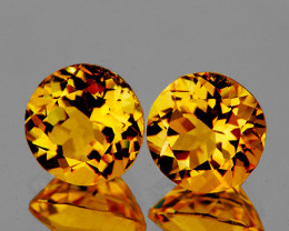 6.00 mm Round 2 pcs 1.50ct Golden Orange Citrine [VVS]