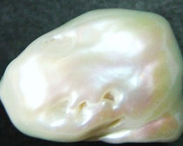 TWISTED  WHITE CORN PEARL-HIGH LUSTER 20CTS [PF499 ]