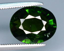 Forest Green 3.30 ct Tourmaline Good Luster