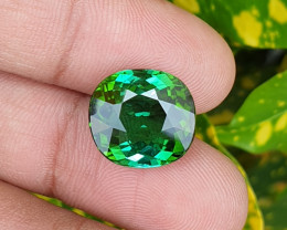 UNHEATED 9.65 CTS NATURAL STUNNING VVS TOP GREEN TOURMALINE MOZAMBIQUE