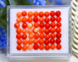 Red Coral 13.49Ct Natural Untreated Italian Red Coral Lot Box B1421