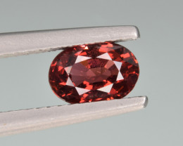 Natural Rubellite 1.13 Cts.