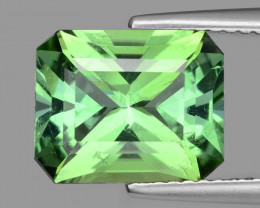 3.35 Cts AAA Grade Sparkling Tourmaline ~ Mozambique FT7