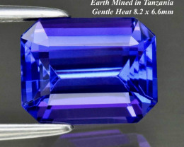2.55ct  Loupe Clean Vivid Tanzanite - Octagon Violet Blue 8.2 x 6.6mm GREAT
