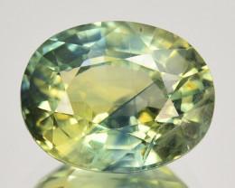 2.98 Cts Natural Sapphire Beautiful Parti mix Color Oval Cut Australia