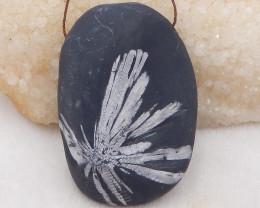 531.5cts natural chrysanthemum fossil gemstone pendant, chrysanthemum fossi